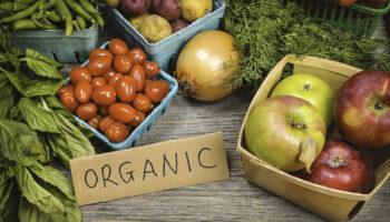 Узаконены требования к сертификации органической продукции