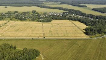 Земля в Украине может стоить от $3000 до $15 000 за гектар – эксперт
